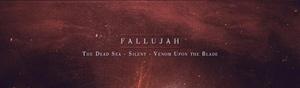 Fallujah-(4)