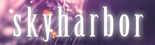 Skyharbor3