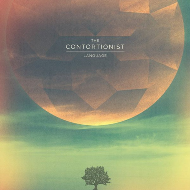 TheContortionist6