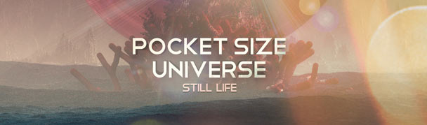 PocketSizedUniverse