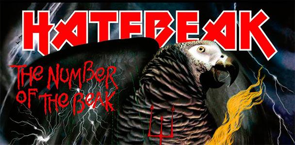Hatebeak4