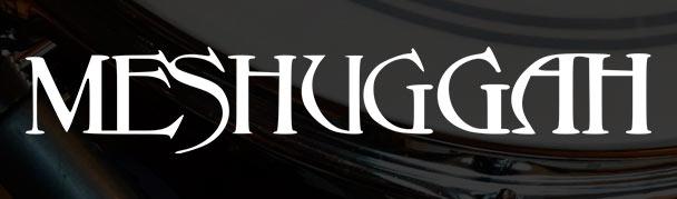 Meshuggah3
