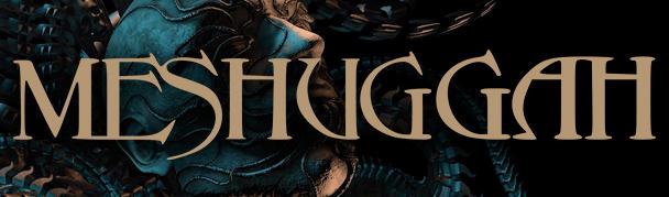 Meshuggah11