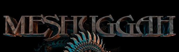 Meshuggah8