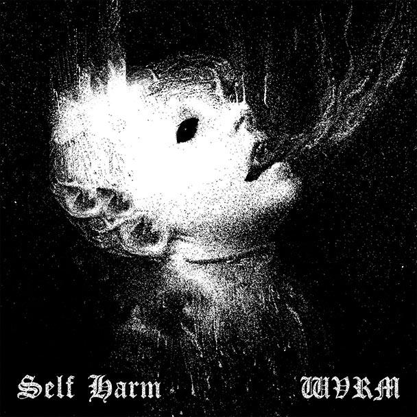 selfharm2